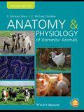 Anatomy Physiology Dom Animals