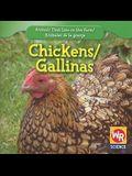 Chickens/Gallinas