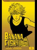 Banana Fish, Vol. 5, Volume 5