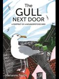 The Gull Next Door: A Portrait of a Misunderstood Bird