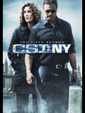 Csi: New York - The Fifth Season