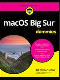 Macos Big Sur for Dummies