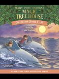 Magic Tree House Collection: Books 9-16: #9: Dolphins at Daybreak; #10: Ghost Town; #11: Lions; #12: Polar Bears Past Bedtime; #13: Volcano; #14: Drag