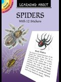 Learning about Spiders: With 12 Stickers