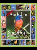 Audubon Songbirds and Other Backyard Birds Calendar 2006
