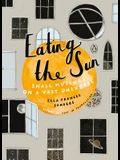 Eating the Sun: Small Musings on a Vast Universe