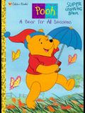 A Bear for All Seasons Coloring Book