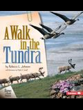 A Walk in the Tundra