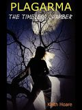 The Timeless Chamber