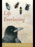 Life Everlasting: The Animal Way of Death