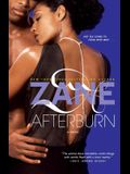 Afterburn: A Novel