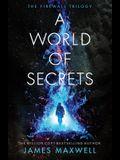 A World of Secrets