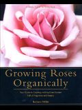 Growing Roses Organically: Your Guide to Creating an Easy-Care Garden Full of Fragrance and Beauty