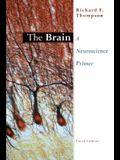 The Brain: A Neuroscience Primer