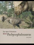 Meet Pachycephalosaurus