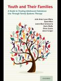 Youth and Their Families: A Guide to Treating Adolescent Substance Use Through Family Systems Therapy