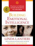 Building Emotional Intelligence: Practices to Cultivate Inner Resilience in Children [With CD (Audio)]