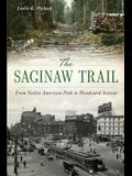 The Saginaw Trail: From Native American Path to Woodward Avenue