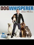 2012 The Dog Whisperer Wall calendar