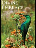 DIVINE EMBRACE New, 30 Chapter, 444page Revised Edition