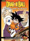 Dragon Ball: Chapter Book, Vol. 10