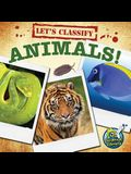 Let's Classify Animals!