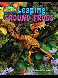 Leaping Ground Frogs