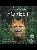 Soul of the Forest 2020 Wall Calendar: Traveling the Globe, Connecting the World