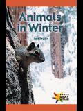Animals in Winter