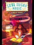 Love Sugar Magic: A Dash of Trouble