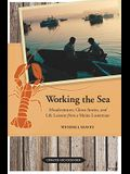 Working the Sea: Misadventures, Ghost Stories, and Life Lessons from a Maine Lobsterman