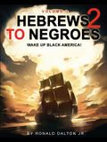 Hebrews to Negroes 2: WAKE UP BLACK AMERICA! Volume 1