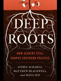 Deep Roots: How Slavery Still Shapes Southern Politics