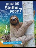 How Do Sloths Poop?