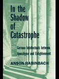 In the Shadow of Catastrophe