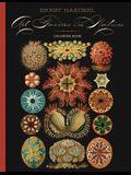 CBA Haeckel/Art in Nature