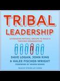 Tribal Leadership Lib/E: Leveraging Natural Groups to Build a Thriving Organization