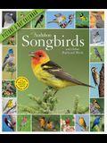 Audubon Songbirds and Other Backyard Birds Picture-A-Day Wall Calendar 2021