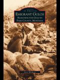 Emigrant Gulch: : Searching for Gold in Park County