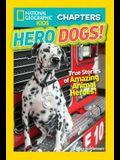 Hero Dogs!: True Stories of Amazing Animal Heroes!