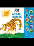 World of Eric Carle: Animal Babies