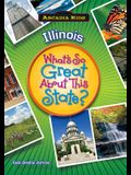 Illinois: What's So Great about This State?