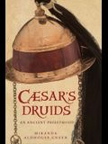 Caesar's Druids: Story of an Ancient Priesthood