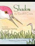Shadow the Sandhill Crane
