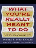 What You Re Really Meant to Do: A Road Map for Reaching Your Unique Potential