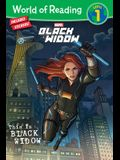 This Is Black Widow [With Stickers]