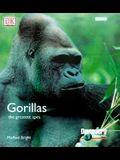 Gorillas: The Greatest Apes