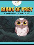 Birds of Prey: A Baby Owls Coloring Book