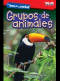 La Hora de la Verdad: Grupos de Animales (Showdown: Animal Groups) (Spanish Version) (Level 1)