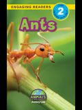 Ants: Animals That Make a Difference! (Engaging Readers, Level 2)